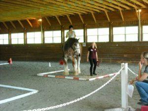 large indoor riding arena